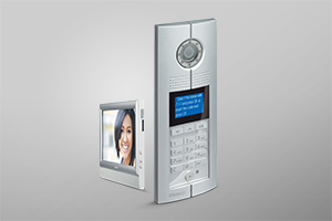 D45 system: audio and video door entry system